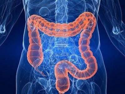 В кишечнике человека обнаружены неизвестные бактерии