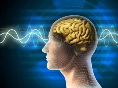 Эксперимент показал, что человек способен чувствовать магнитное поле